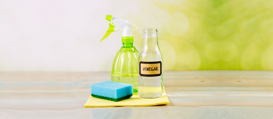 10 Ways Vinegar Helps You Save Up on and Speed Up Your Spring Cleaning